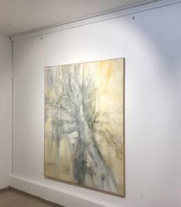 Baum- T. Piwarski